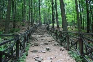 Szlaki gor swietokrzyskich