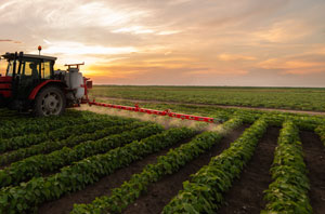 Gospodarstwa rolne