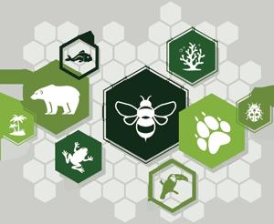 Różnorodność biologiczna