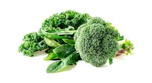 Przyswajalność wapnia w warzywach zielonych