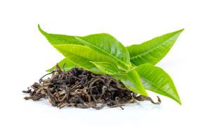 Hydrolat z zielonej herbaty idealny dla skóry suchej i dojrzałej