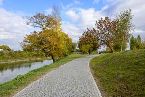 Park w Sandomierzu