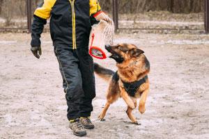 Szkolenie obronne